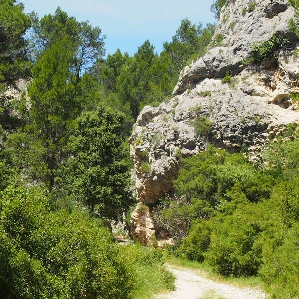 crau-vallon.agathe.forest