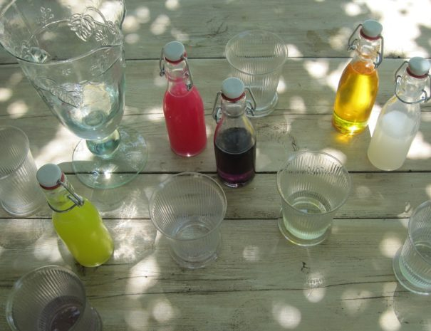 sirop.agathe.forest