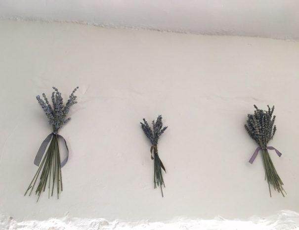 demoiselles-lavander.agathe.forest